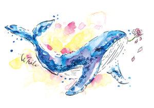 whale/art book 「animals2019」掲載